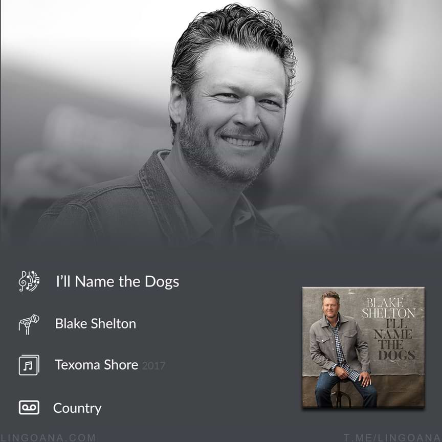 دانلود و ترجمه Blake Shelton - I'll Name the Dogs